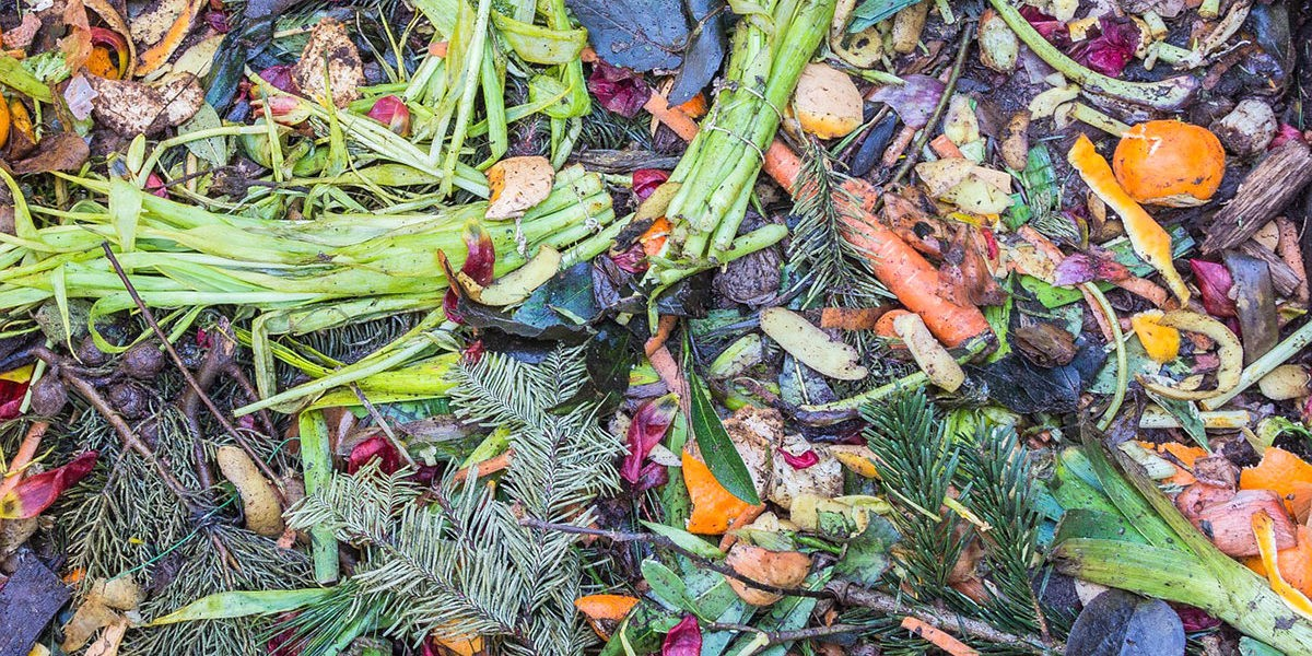 Le compostage : comment faire mon compost ?