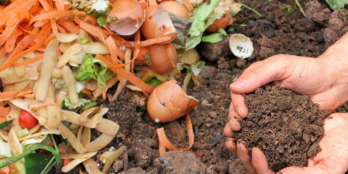 Que peut-on mettre dans un compost ?