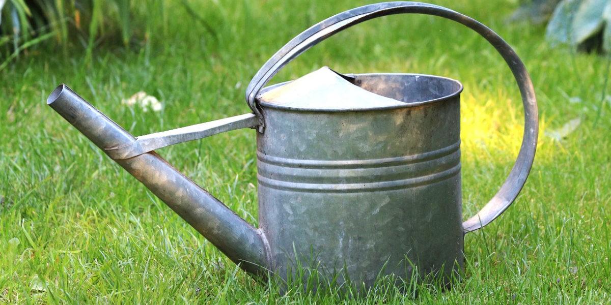 Récupérer l'eau de pluie, la bonne idée