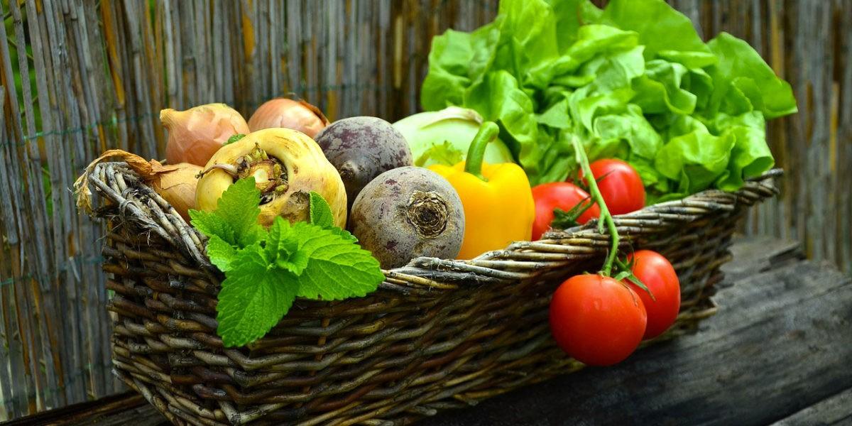 Quels légumes cultiver ?