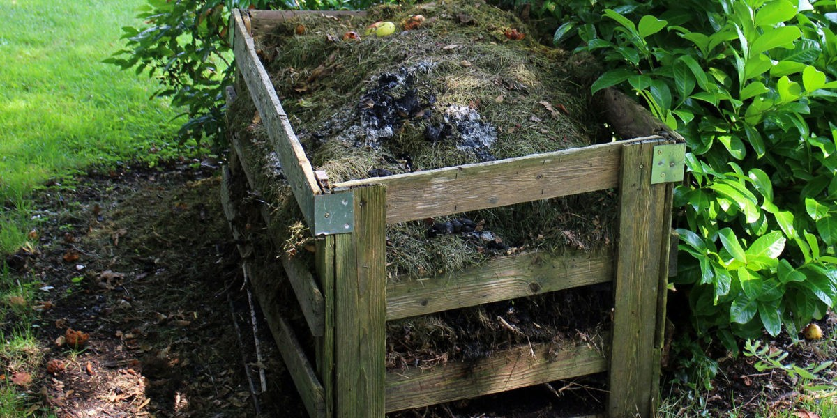 Utiliser le compost au potager et au jardin