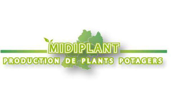 Midi Plant