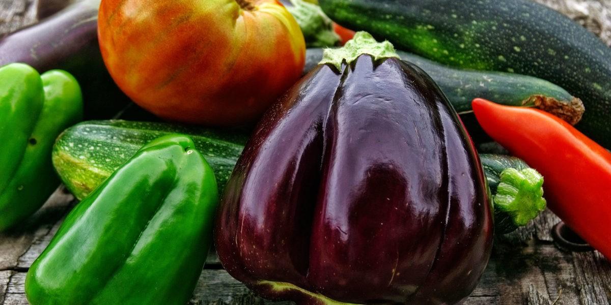 Que récolter en août au potager ?