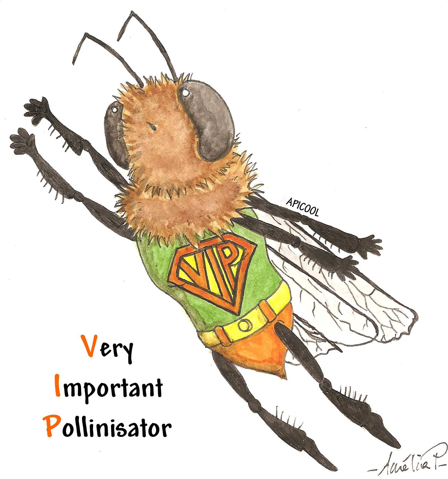 Very Important Pollinisator