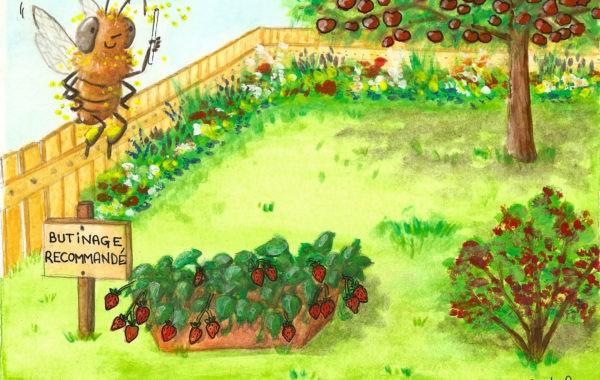 Un jardin pollinisé