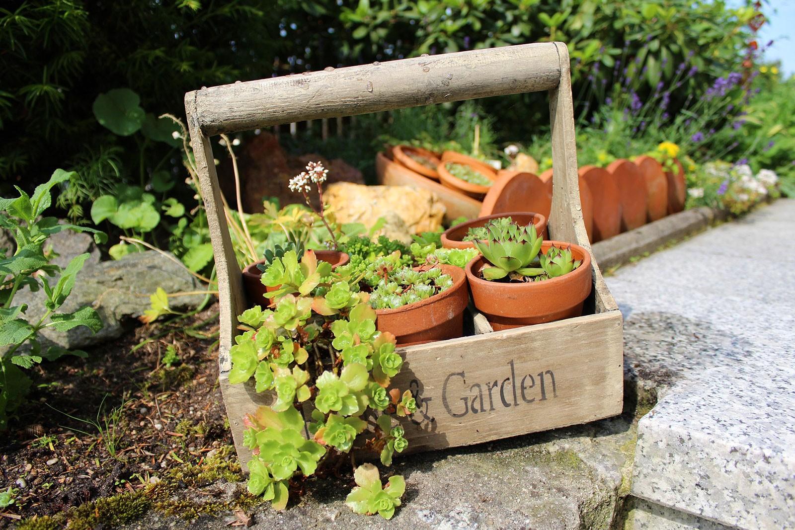 un potager sur sa terrasse blog jardin. Black Bedroom Furniture Sets. Home Design Ideas