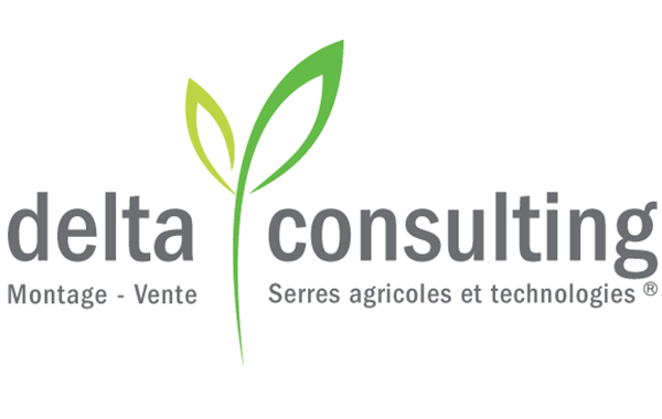 Delta Consulting