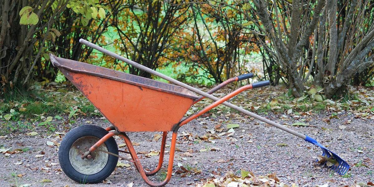 que faire au jardin en décembre ? - fiches pratiques du jardin