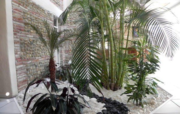 Travaux paysagers Floribunda