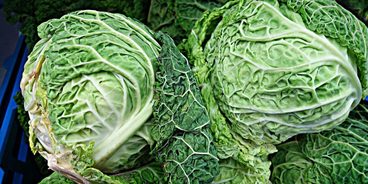 Chou frisé : un légume complet