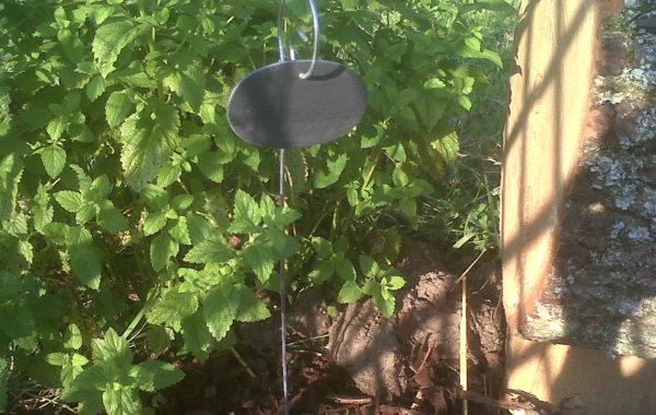 Etiquettes ardoise jardin