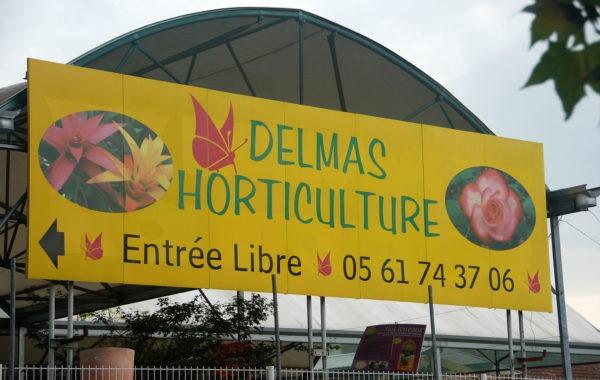 Delmas Horticulture