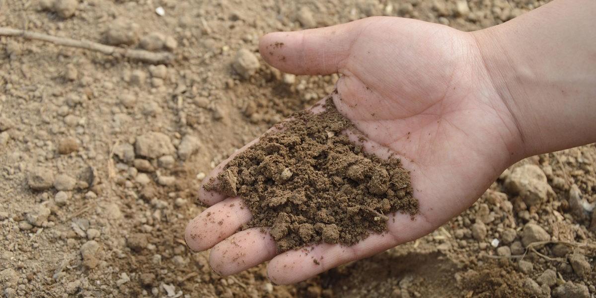 Quelle est la texture de votre sol ?