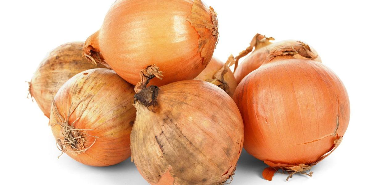 Oignon : un aromate et légume