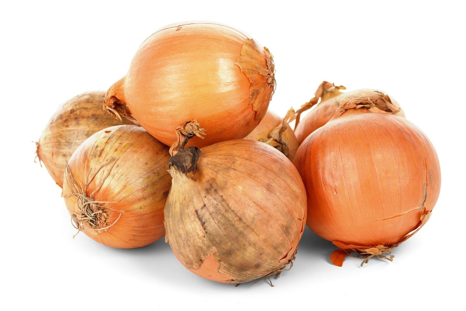 Culture De L Oignon Rouge oignon : un aromate et légume - fiches pratiques du jardin
