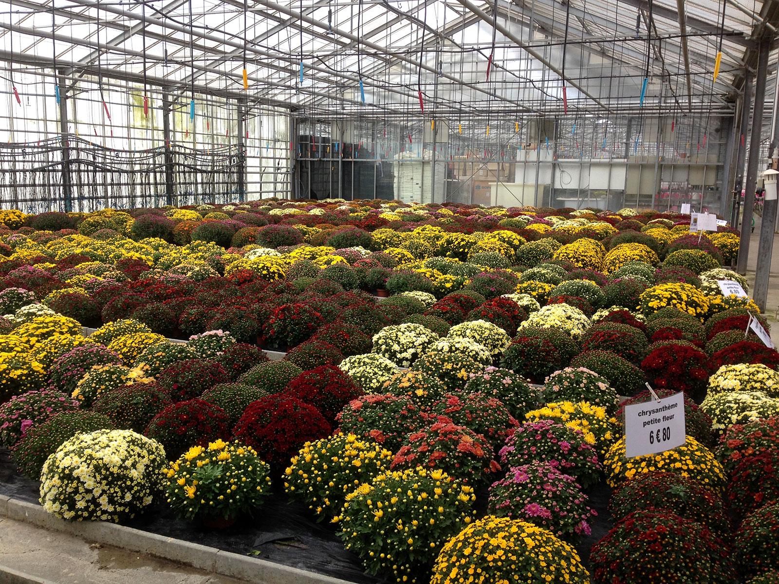 Jardinerie Batuel