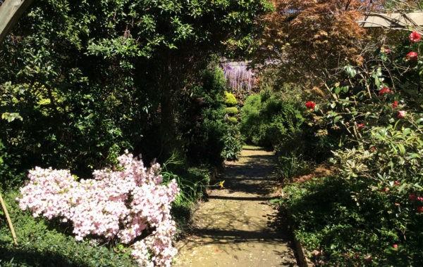 Pépinière Botanique et Plantarium