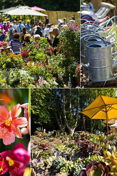 25e édition des Journées des plantes d'Albertas