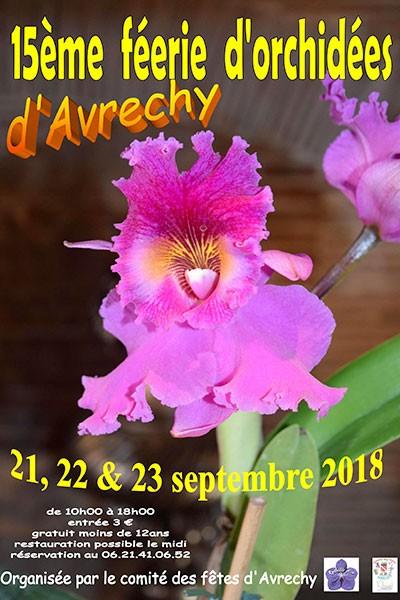 Féerie d'orchidées d'Avrechy