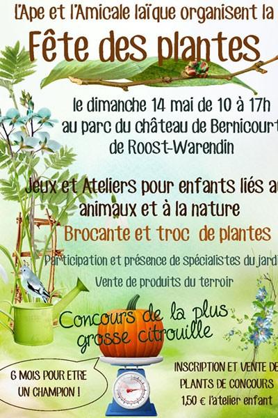 Fête des plantes au château de Bernicourt