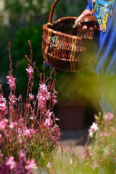 Marché aux Fleurs de Tarascon