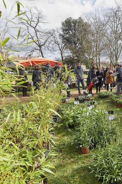 Le printemps des plantes de Castanet-Tolosan