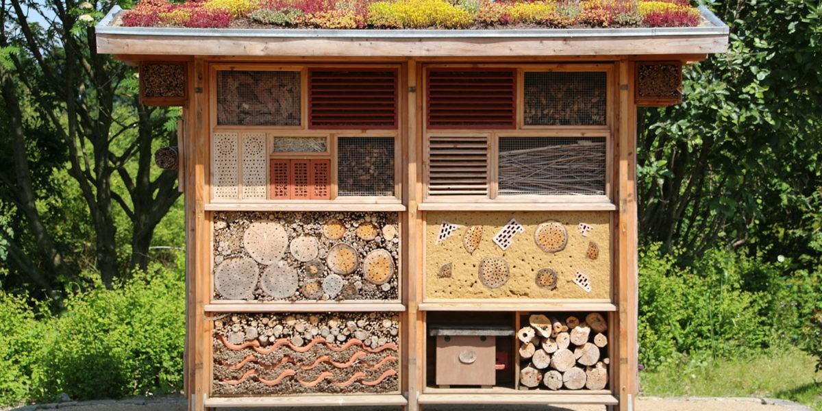 Installer un hôtel à insectes dans son jardin