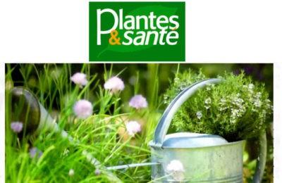 Plantes et Santé - Propose jardin contre légumes