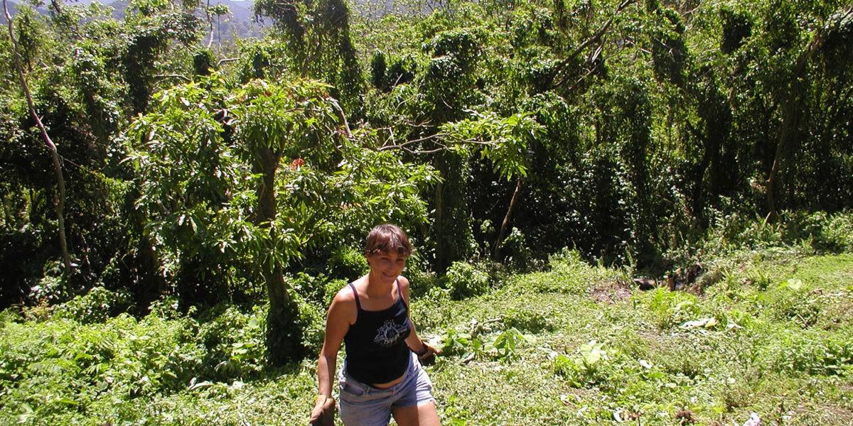 En guadeloupe natacha pr te son jardin tropical for Jardin tropical guadeloupe