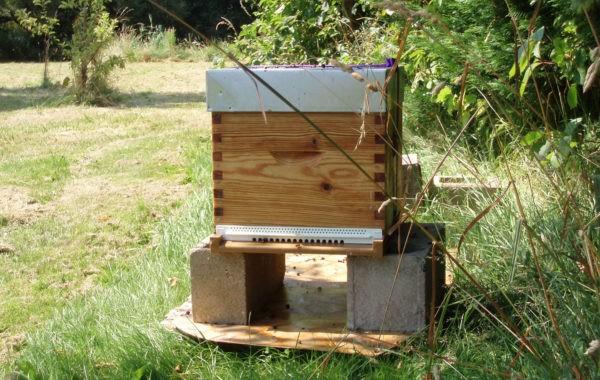Prêt de jardin contre installation de ruche