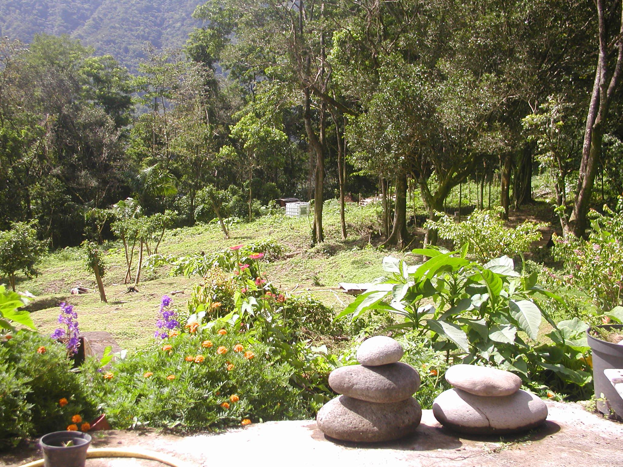 Prêt de jardin en Guadeloupe