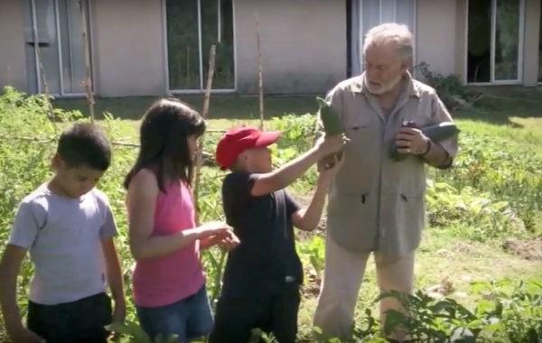 Alain prête son jardin à Ali et ses enfants