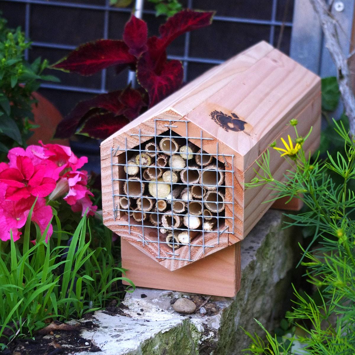 Gîtes à abeilles Symbiosphère