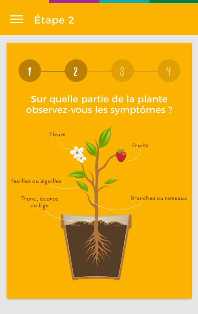 La Clinique des Plantes