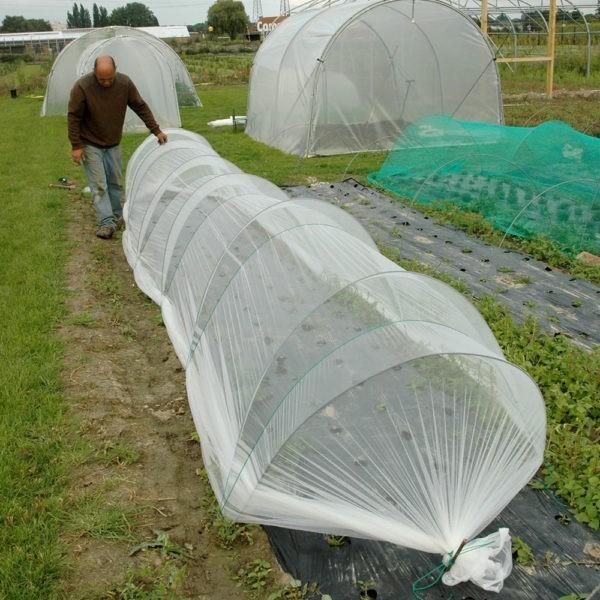 Chenille anti-insectes
