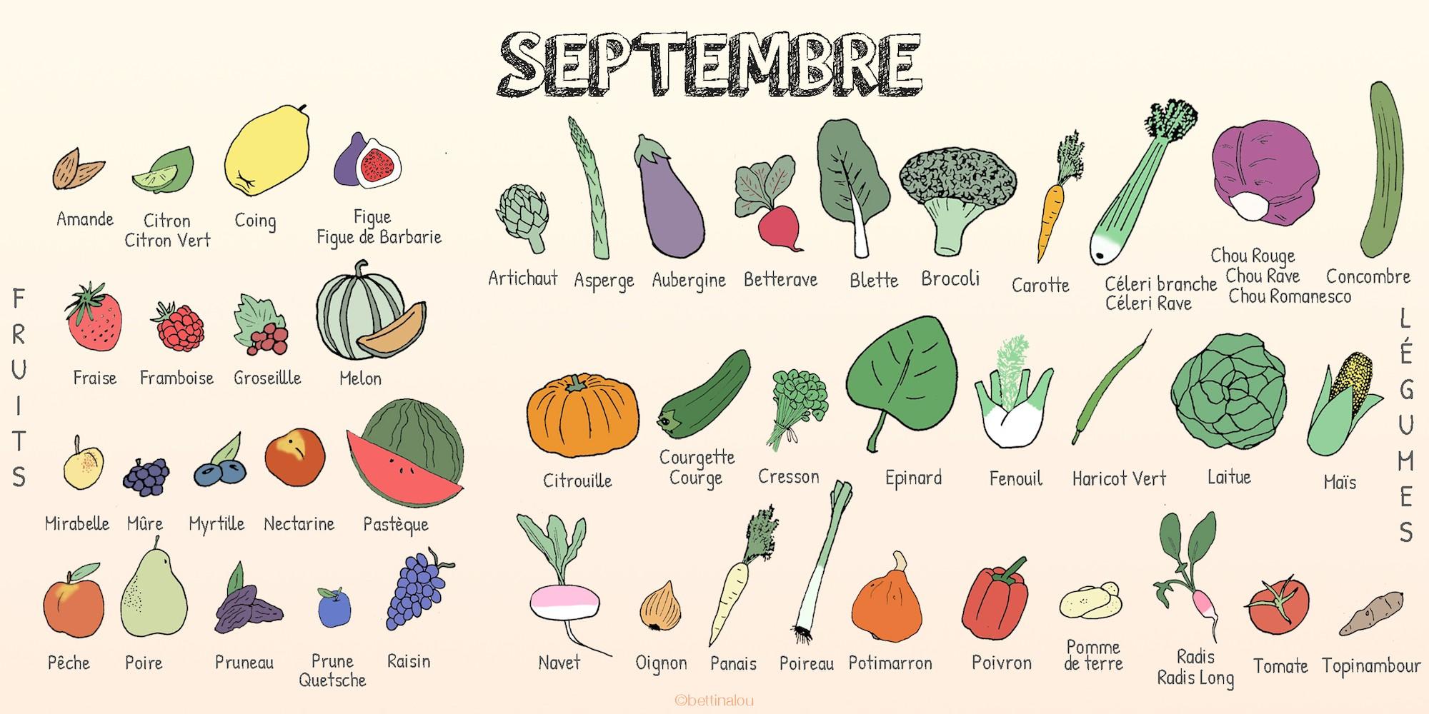 Les fruits et légumes de septembre - Fiches pratiques du ...