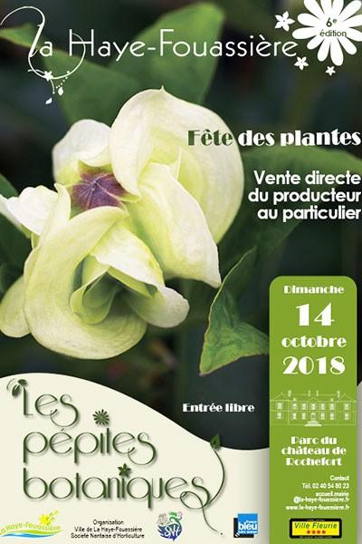 Les Pépites Botaniques