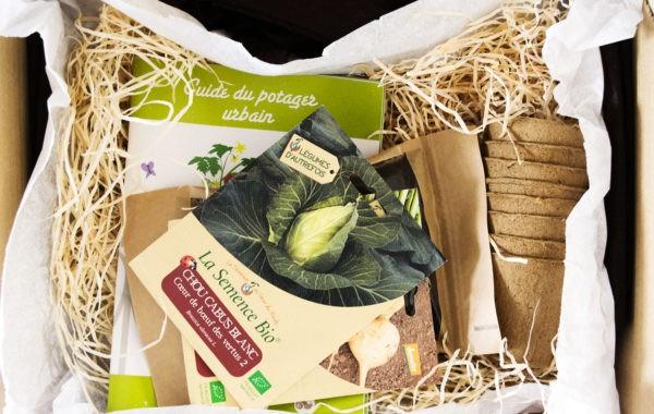 Avec Mon Petit Coin Vert, créez un potager urbain 100 % bio