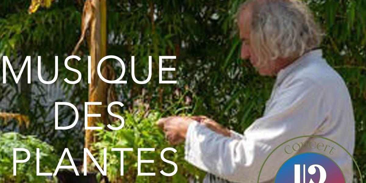 Rencontres autour de la Musique des Plantes !