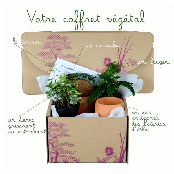 Coffret végétal