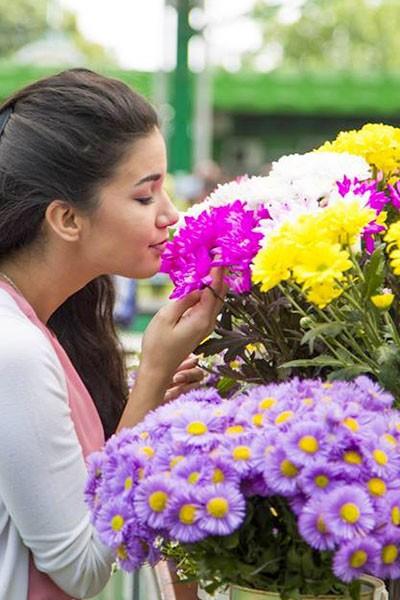 Fleuralies de Vaison-la-Romaine