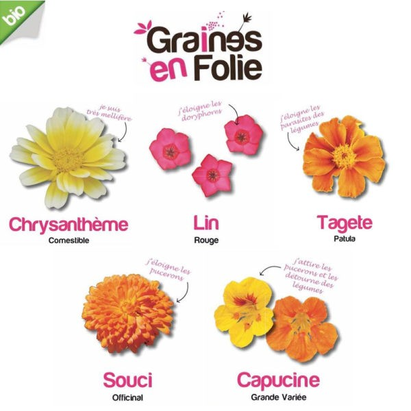 Fleurs auxiliaires et comestibles