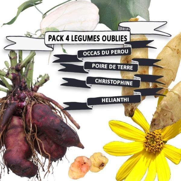 Pack légumes oubliés