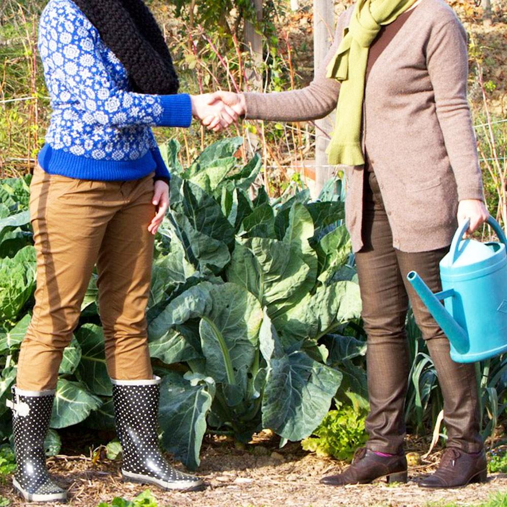 Contrat de prêt de jardin contre partage des récoltes
