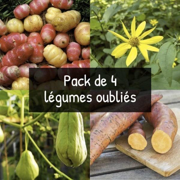 Pack de 4 légumes oubliés