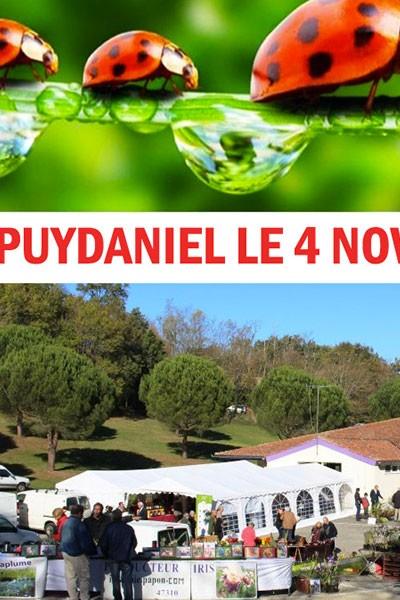 Foire d'automne de Puydaniel