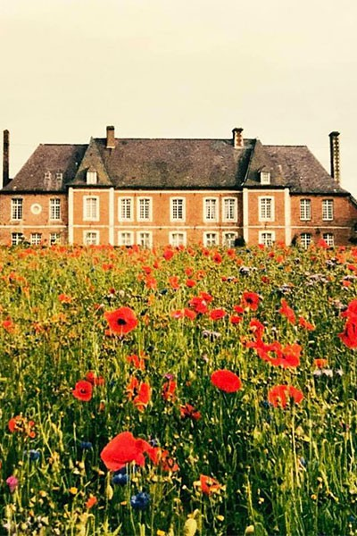 Fête des Plantes et Brocante au Château Flore