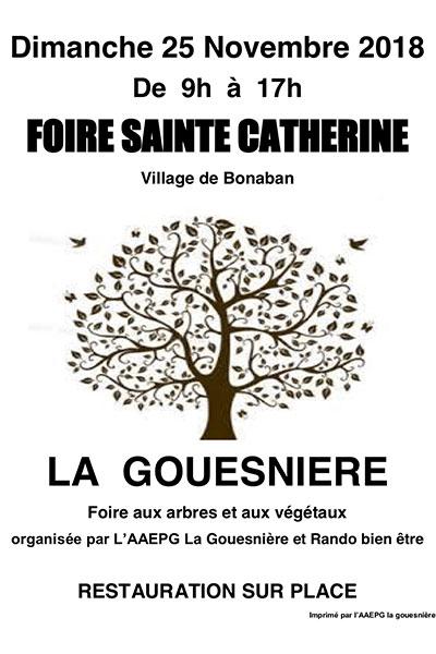 Foire Sainte-Catherine de la Gouesniere