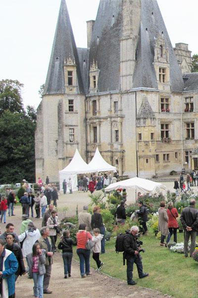 Château Flore au Château de Fontaine-Henry