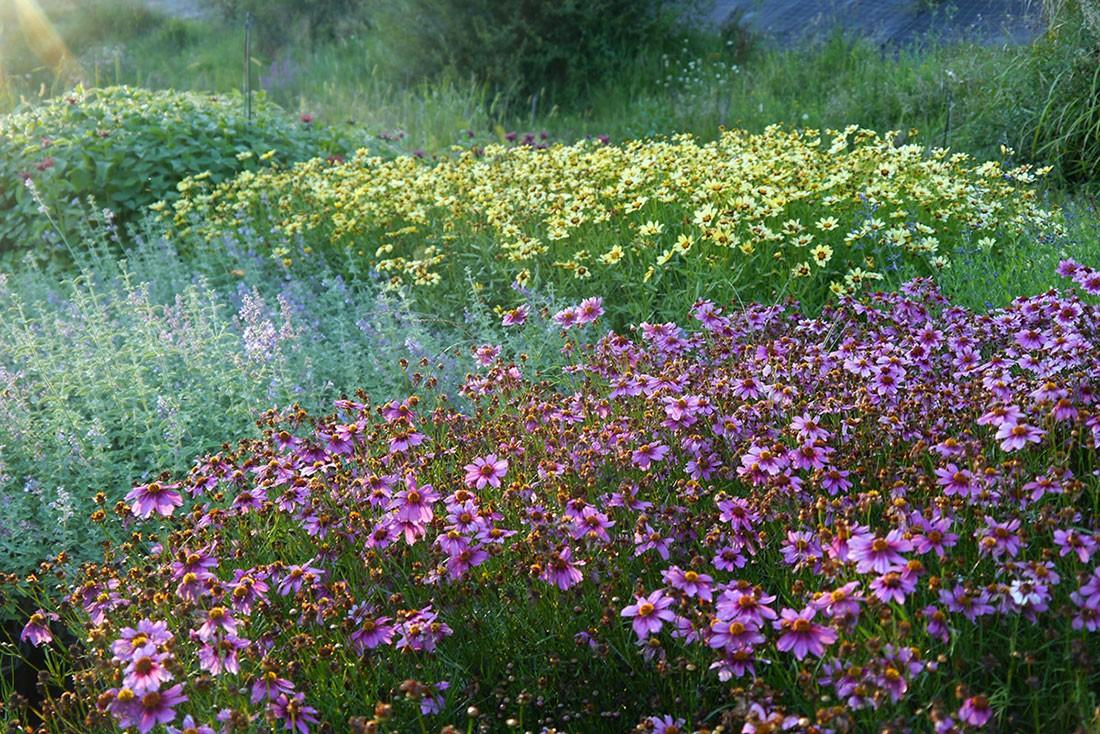 Le Jardin du Taurignan